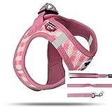 Curli 1101-0202-1-355-06 Vest Geschirr Air-Mesh + Basic Leine, Pink-Caro