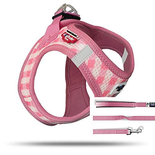 curli Welpenset Geschirr Vest Air-Mesh mit Leine, rosa-caro, M - Air-mesh-gewebe