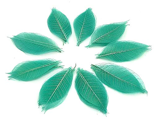 Nava Chiang 100Skelett Blätter Farbe dekorativen Craft 7,6cm (hellblau) DIY Handwerk Kits oder Dekorieren auf verschiedene Anlässe künstlichen Blättern Craft Karte Scrapbook (Diy Stirnband Kit)