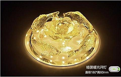 yxhflo FishLedCrystal créative moderne et minimaliste lampe de plafond lumières lumières allée corridor Hyun lights off,flush Mount,lumière chaude