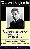 Image de Gesammelte Werke: Essays + Aufsätze + Satiren + Kritiken + Autobiografische Schriften (Ü