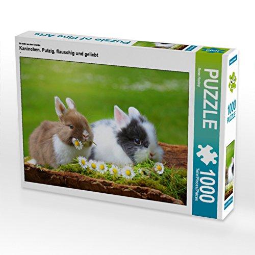 CALVENDO Puzzle Kaninchen. Putzig, flauschig und geliebt 1000 Teile Lege-Größe 64 x 48 cm Foto-Puzzle Bild von Rose Hurley