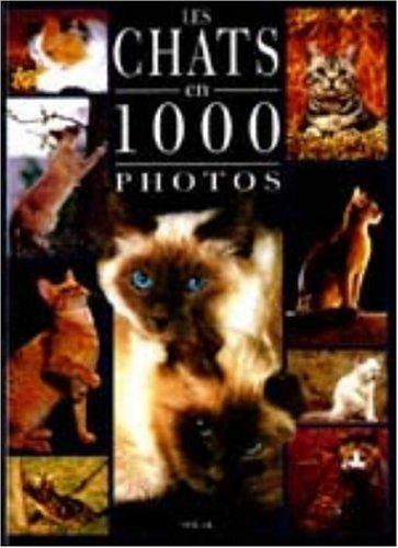 Chats 1000 photos