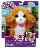 Hasbro A9084EU4 - FurReal Friends Lil' Big Paws, sortiert