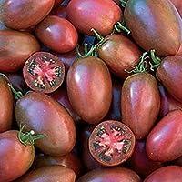 "Plentree Famoso tomate sabroso húngaro dulce púrpura""de Ucrania púrpura"", de la herencia, no gmo"