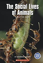 The Social Lives of Animals: A Chapter Book (True Tales: Animals)