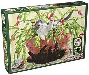 Cobblehill 80031 - Puzzle de 1000 Piezas, diseño de Cactus