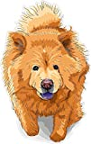 Best Design With Vinyl Decals Friend Items For Girls - Funny Sticker for Men Dog Chow Chow 7 Review