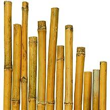 Canne bamb for Canne di bambu per arredamento