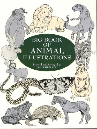 Big Book of Animal Illustrations (Dover Pictorial Archive)