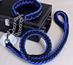 Sri Cord Nylon Dog Leash for Large Dogs with Extra Strong Brass Snap Hook, Black/Blue (Large)