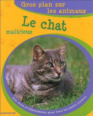 Le chat malicieux