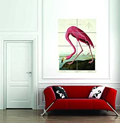 Havell Audubon American Flamingo Giant Art Print Poster Picture