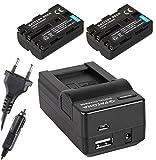 4in1-SET für die Sony Alpha 58 / SLT-A58K --- 2 Akkus (1300mAh) + 4in1 Ladegerät (u.a. mit USB / micro-USB und Kfz/Auto) inkl. PATONA Displaypad
