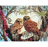 HHYSPA DIY digitales ölgemälde färbung auf leinwand Hand gezeichnet von Zahlen Zeichnung Eule Tiere Bilder Kits wandkunst wohnkultur 40x50 cm