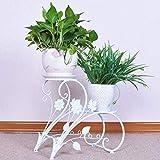 CMmin Pflanzenregal Schräg Freistehender Rahmen Dekoratives Bücherregal Blumenständer Pflanzenständer for das Büro zu Hause (Color : C)