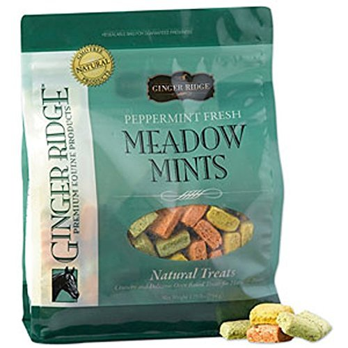 ginger-ridge-meadow-mints-horse-treats-peppermint-fresh-35-lb-bag-by-quiko