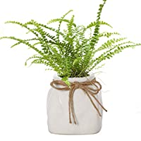Dibor White Sack Shaped Ceramic Indoor House Plant Pot for Herbs, Flowers, Succulents - W14cm