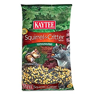 kaytee food squirrel and critter attracts backyard visitors apple aroma 10lb Kaytee Food Squirrel And Critter Attracts Backyard Visitors Apple Aroma 10lb 519FikDYuhL