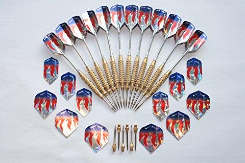 Empire Dart Lot de 12 fléchettes de tournoi WA avec pointes en acier et accessoires