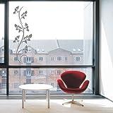 Indigos 4051095400783 Wandtattoo/Wandaufkleber - f111 Abstraktes Design Tribal/Filigrane Ranke mit schönen Blättern und Verzierung, Vinyl, glasdekor, 160 x 52 cm