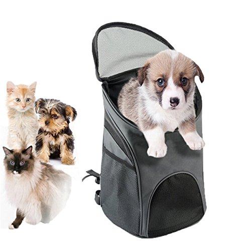 Lalang Tragbare Falten Haustier Hund Katze Breathable Tasche Rucksack für Kleine Hunde Transporttasche Katze Haustier Reise