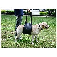 Cinturón auxiliar para caminar para perros, negro Perro de edad avanzada Perro discapacitado Cinturón de protección para las piernas traseras Cinturón de alimentación para mascotas ( Tamaño : Xl )