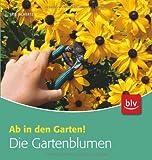 Die Gartenblumen: Ab in den Garten!