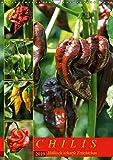 Chilis - Höllisch scharfe Früchtchen (Wandkalender 2019 DIN A3 hoch): Portraits von 12 verschiedenen, extra scharfen Chili Sorten (Monatskalender, 14 Seiten ) (CALVENDO Lifestyle)