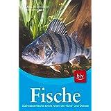 Fische: Süßwasserfische sowie Arten der Nord- und Ostsee