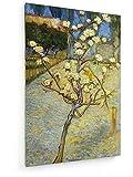 Vincent Van Gogh - Birnenbaum in der Blüte - 20x30 cm - Textil-Leinwandbild auf Keilrahmen - Wand-Bild - Kunst, Gemälde, Foto, Bild auf Leinwand - Alte Meister/Museum