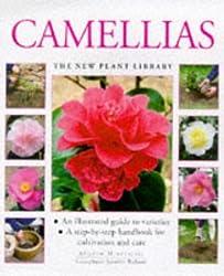 Camellias (New Plant Library) by Andrew Mikolajski (1999-02-01)