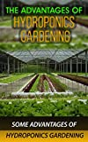 #4: The Advantages of Hydroponics Gardening: Some Advantages of Hydroponics Gardening