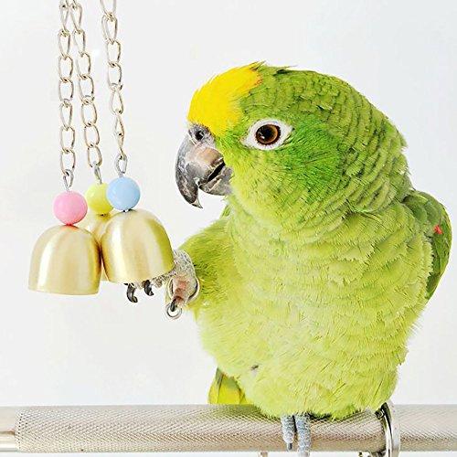 Roblue Vogel Spielzeug Schaukel Kauen Papagei Zubehör mit Glocken Bunt Kette Papageienspielzeug für den Käfig 26x3cm