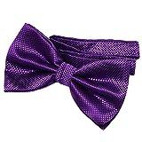 DonDon Noeud papillon pour homme 12 x 6 cm avec crochet déjà lié et réglable - violet
