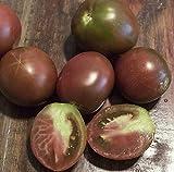 Semi organici: 500 Semi: Semi principe Pomodoro, Run Heirloom pomodoro dalla Siberia da Farmerly