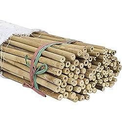 HYF Cañas de bambú para jardín, pack de 10 varillas de bambú de 120 cm, diámetro 10/12 mm, tutores de bambú para soporte de apoyo para plantas, hortalizas, estas estacas de bambú son excelentes para sujetar árboles pequeños, de calidad, fuertes, tratamiento fitosanitario, fumigadas