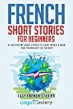 French Short Stories for Beginners: 20 Captivating Short Stories to Learn French & Gr...