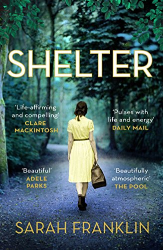 Shelter: 'One of the year's hottest debuts' par Sarah Franklin