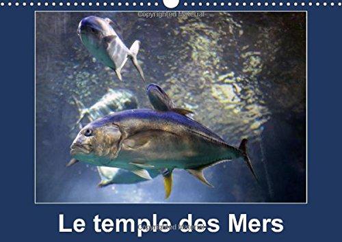 Le temple des Mers 2015: Situe sur le ro...