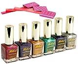 6 Farben Magnet Nagellack Nail Art Gel & 3tlg Ungleich Stil Magnet Slice
