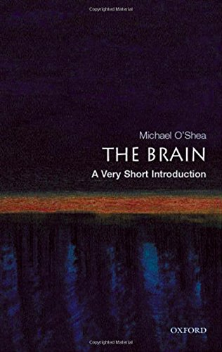 The Brain: A Very Short Introduction (Very Short Introductions) por Michael O'Shea