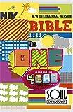 NIV Soul Survivor Bible In One Year (New International Version)