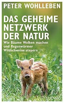 Das geheime Netzwerk der Natur: Wie Bäume Wolken machen und Regenwürmer Wildschweine steuern (German Edition) by [Wohlleben, Peter]