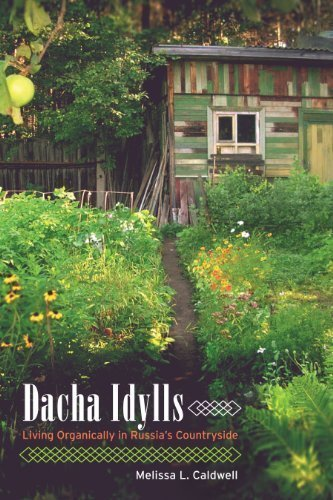 Dacha Idylls: Living Organically in Russia's Countryside 1st (first) Edition by Caldwell, Melissa L. published by University of California Press (2010)