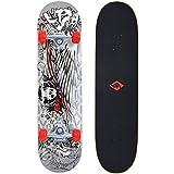 Schildkröt skateboard Kicker 31, compleet board met leuke functies voor beginners, verschillende dekendesigns selecteerbaar,