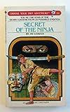Best Bantam Martial Arts - The Secret of the Ninja Review