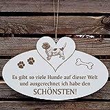 SCHILD Dekoschild mit Herz « Schönster HUND der WELT - PETIT BASSET GRIFFON VENDÉEN » ca. 20 x 12 cm - mit Motiv und Spr