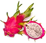 #9: BEE Garden Dragon Fruit Plant Seeds (Pack of 25)
