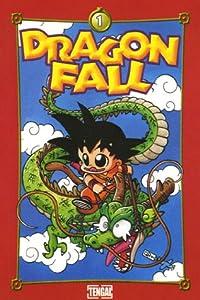 Dragon Fall Edition simple Tome 1